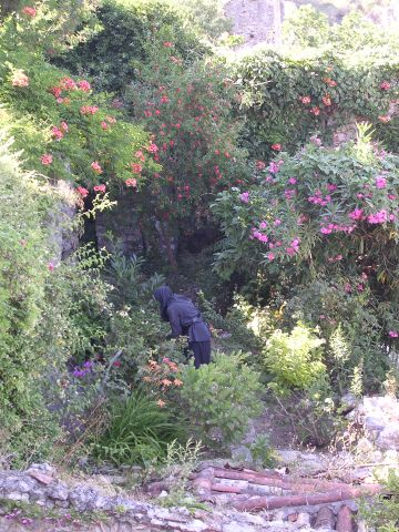 A_nun_tending_the_gardens_at_Mystras.jpg