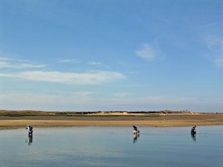 Fishing_at_Alvor.jpg