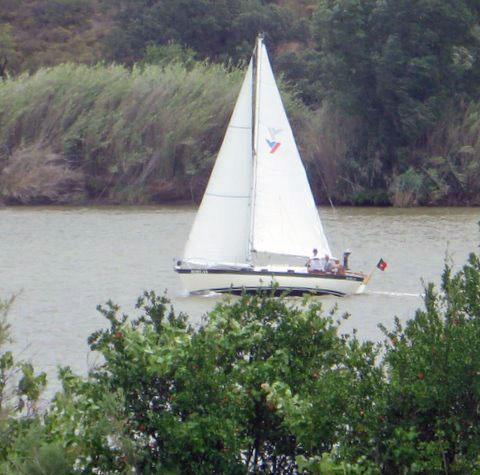 Boreas_sailing.jpg